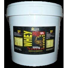 Explode 100% Whey Protein, суроватъчен протеин, 5000 гр